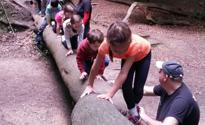 Kids crossing river bed on fallen log